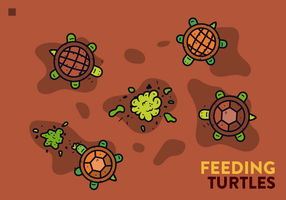 Schildkröten-Vektor