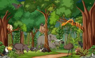wilde Tierzeichentrickfigur in der Waldszene vektor