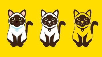 Siam Katzen setzen Farbe und Umriss vektor