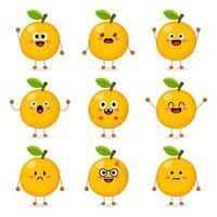 söt orange frukt vektor