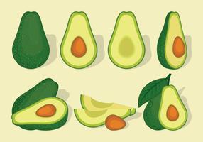 Avocado-Vektorsatz