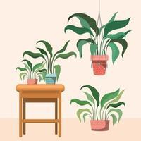 krukväxter med makramehängare och krukväxter på ett träbord vektor