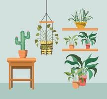 krukväxt med makramehängare och krukväxter vektor