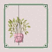 Rahmen mit Zimmerpflanze in einem Makramee-Kleiderbügel vektor