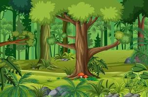 skogsscen med många träd vektor