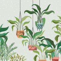 krukväxter i macrame galgar trädgård scen vektor