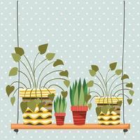 Zimmerpflanzen in Makramee-Kleiderbügeln und Schaukel vektor