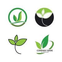grünes Blatt Logo vektor