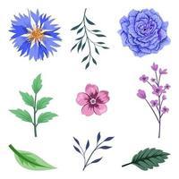 Sammlung von schönen Kräutern und wilden Blumen und Blättern lokalisiert auf weißem Hintergrund. vektor