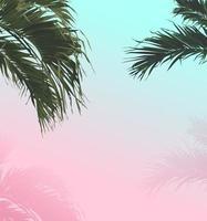 palm söt pastell sommar bakgrund vektor