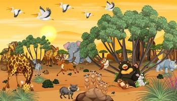 afrikanskt djur i skogslandskapet vid solnedgången vektor