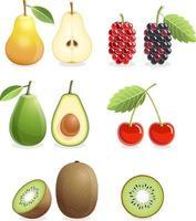Satz bunte Fruchtikonen Birne, Maulbeere, Kirsche, Kiwi, Avocado. Vektorillustration. vektor