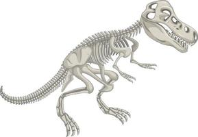 Dinosaurierskelett auf weißem Hintergrund vektor