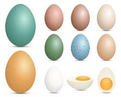 Eier setzen Vektor-Design-Illustration lokalisiert auf weißem Hintergrund vektor