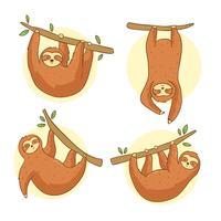 Handdragen Sloth Vector