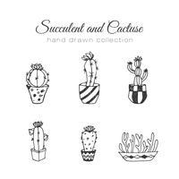 Kaktus illustration. Vektor saftiga och kaktus handgjorda uppsättning.