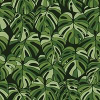 monstera blad sömlösa mönster