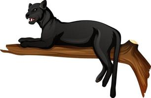 schwarzer Panther, der auf einem Zweig auf weißem Hintergrund liegt vektor