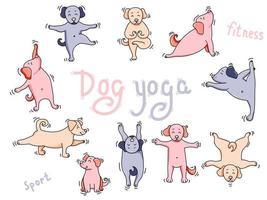 Yoga-Haustiere. große farbige Reihe von Hund Yoga. niedliche Welpensportler stehen in einer Asana auf und meditieren, machen Sportübungen und machen Übungen. Vektorillustration. isoliert auf weißem Hintergrund vektor