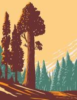 allmänt bevilja trädspår med den största jätte sequoiaen i den allmänna beviljande lundavsnittet av Kings Canyon National Park i Kalifornien wpa affischkonst vektor