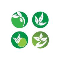 grünes Blatt Logo gesetzt vektor
