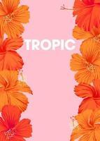 tropischer Hintergrund des leuchtend orangefarbenen Hibiskus mit Platz für Text vektor