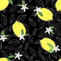 nahtlos von Zitrusfrüchten Skizze. in Scheiben schneiden, Stücke schneiden, Läppchen, Pflanzenblätter. Vektorillustration lokalisiert auf weißem Hintergrund. handgemalt.