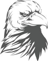 Weißer Adler Falke Falke Kopf Silhouette schwarze Illustration Zeichnung vektor