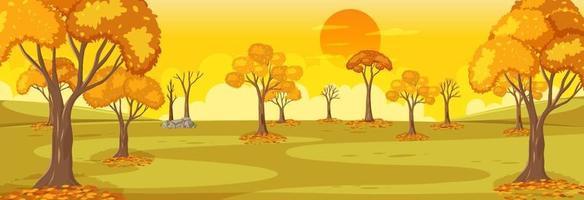 parkera höstsäsongens horisontella scen vid solnedgången vektor