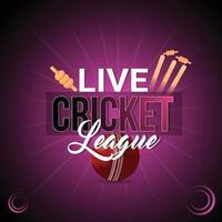 Cricket-Meisterschaftsspiel mit Stadion