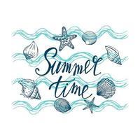 snäckskal, sommar, semester, uppsättning snäckskal och sjöstjärnor, vektor. handritade snäckskal och sjöstjärnor. vacker inskrift i modern kalligrafi.