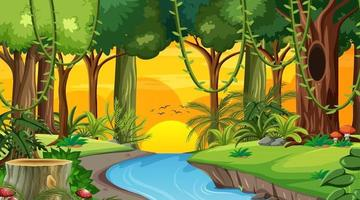 Waldlandschaftsszene zur Sonnenuntergangszeit mit vielen verschiedenen Bäumen vektor