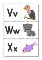 englisches Alphabet mit Comicfiguren v, w, x. Karteikarten. Vektorsatz. heller Farbstil. lerne abc. Klein- und Großbuchstaben. vektor