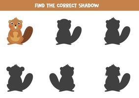 Finde den richtigen Schatten eines niedlichen Cartoon-Bibers. vektor
