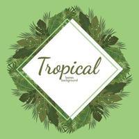 grüner Illustrationsvektorentwurf des tropischen Blatthintergrundes vektor