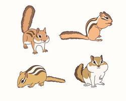 niedliche Eichhörnchenillustration. vektor