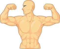 Bodybuilder, der Armbizepsmuskelkarikatur-Vektorzeichnung isoliert biegt vektor