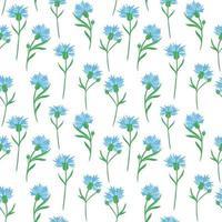 nahtloser Hintergrund mit Kornblumen. Vektor. zartes festes Blumenmuster. Blaue kleine Wildblumen. vektor