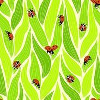 Marienkäfer nahtloses Muster für Dekorationsdesign vektor