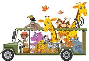 Zookonzept mit wilden Tieren im Auto lokalisiert auf weißem Hintergrund vektor