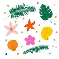 uppsättning sommarelement, monstera, palm, skal, sjöstjärna, blommor. tomt för vykort och banderoller. platt vektorillustration. vektor
