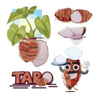Taro-Wurzelvektor. Taro Pflanze. Scheibe Taro. vektor