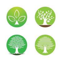 Baum Logo Bilder Design-Set vektor