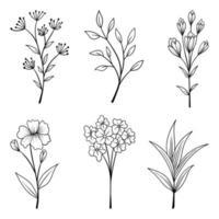 samling av vackra örter och vilda blommor och blad isolerad på vit bakgrund.