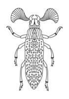 lineare Malbuchillustration des fanösen Käfers vektor