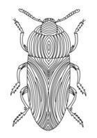 lineare Malbuchillustration des goldenen Käfers vektor