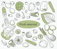 olika typer av gröna grönsaker. handritade stilvektordesignillustrationer.
