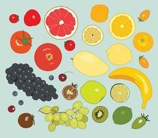 olika typer av frukter. handritade stilvektordesignillustrationer.