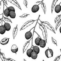 handritad sömlösa mönster med litchifrukter, grenar och löv. vektorillustration i botanisk skissstil