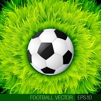 Vektor-Fußball-Design vektor